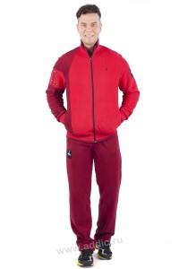 Спортивный костюм мужской (111M-RL-535)